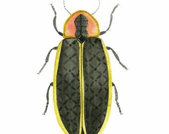 Firefly Art Print, Bug Art, Insect Art, Entomology Art, Lightening bug Art, Boys Room Art, Children's Room art, Nursery Art Decor, Farmhouse