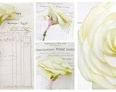 Second Wedding Anniversary Long Stem Apple Rose Cotton Gift Flower