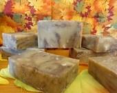 FFS Free for Shipping Pumpkin Pie Vegan Bath Soap 2.4 oz with Fresh Pumpkin Puree