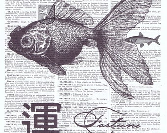 Asian Fortune Fish.good luck.goldfish.koi.fish.sea creature.Antique Book Page Print.Collage.home deco.mom.dad.sis.bro.child.wall hanging.art