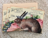 Rabbit King Notecards - French Rabbit with Crown Notecards - Flat Notecards, Easter Rabbit, Roses - Set of 3 Flat Notes with envelopes