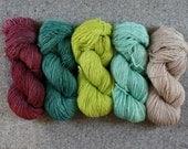 Backyard Nights Set of 5 skeins fingering weight wool total 2500yds 2286m