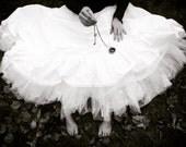 True North, The Key to Explore, White Dress, Fashion, Ruffles, TuTu, Compass, Winter Dream, By Paper-Mâché Dream,fPOE