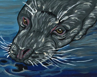ACEO ATC Original Gouache Painting Seal Wildlife Art-Carla Smale