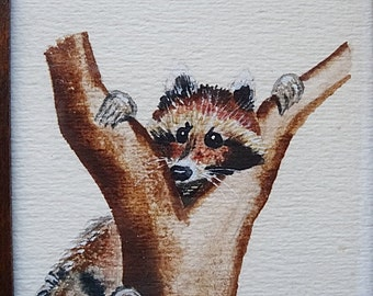 Original Painting of Raccoon in Tree Signed 6.5 x 4.5