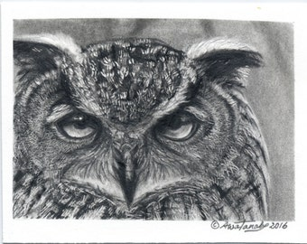 """Original Graphite Drawing of an Eagle Owl 2.5"""" x 3.5"""" ACEO"""