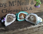 Reserved Custom Order for Coydoglover Guinea Pig Needle Felted Pocket Pet Miniature Birthday Pets Gift Wool Lovinclaydolls Lisa Haldeman