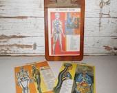 Vintage Medical Illustration, Vintage Red Cross Illustration, Vintage Poisonous Plants, Vintage Snakes
