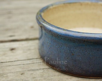 5 Inch Blue Purple and Cream Pet Dish