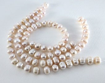 Large Pale Pink Ringed Potato Pearls - 10mm - 8-inch Strand