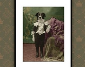 Print for childrens wall art, signed by artist, dog art, photography collage, Toby the Border Collie, 8x10 matted signed print.