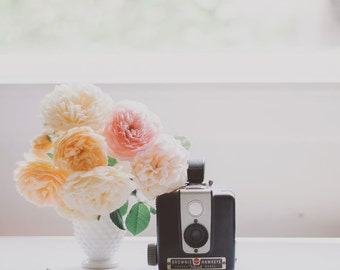 Still Life Photography - English Roses Vintage Camera Photo Flower Photography Cabbage Roses English Rose Print Still Life Art