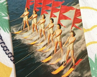 Vintage Cypress Gardens Florida Aqua-Maids postcard 6 girls on water skis flags skiers 1950s souvenir Floridiana chrome
