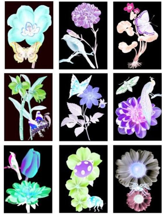 "flowers birds butterflies Digital Collage Sheet download 2.5"" x 3.5"" printable art Images graphics downloadable art images Neon glowing"