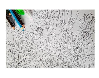 Hummingbird In Flowers Coloring Page Pattern DIY Print at home Digital Download, Adult Coloring, Patterns