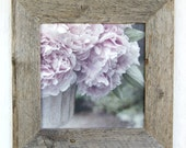 Peony Canvas Art in Barnwood Frame 8x8 print