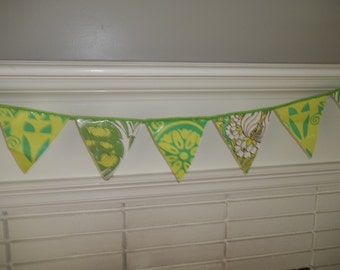 Party Banner ~ Pennant Flag Banner ~ Amy Butler Laminated Cotton Garland