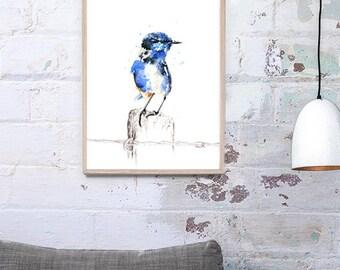 Australian Superb Fairy Wren, Australian Native Bird, Blue Wren Art Print A3, A2 & A1 Bird Watercolour Illustration giclee Art Print