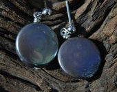 Black Coin Pearl Earrings