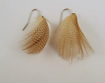 Feather Earrings Wood duck