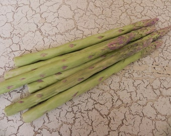 porcelain asparagus