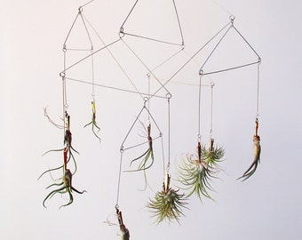 Geometric Tillandsia/air plant mobile Use coupon code MOBILE for 20% OFF!!!