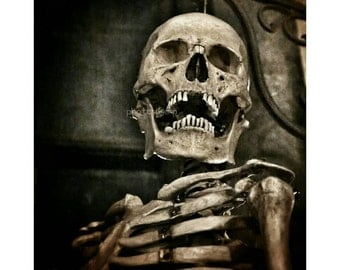 8 x 10 Nocturne Ally Skeleton photo print