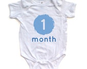 1 Month 2 Months Set of 12 Baby Bodysuits One for Each Month Boy or Girl Pink or Blue Print Monthly Celebration Outfits
