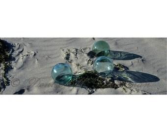Japanese Fishing Floats Photo - Beach House Wall Art - Glass Float Beach Decor - Sea Glass Beach Photo - Green Glass Float Photo