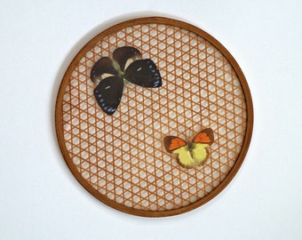 Vintage Trivet Bamboo Caning Butterflies under Glass Mid-Century