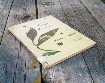 Vintage book Casper the Caterpillar by Celeste K. Foster 1964