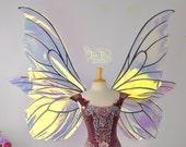 Giant Delia Butterfly 6 Paneled Fairy Wings in Clear Iridescent with Black Veins, Ready to Ship!