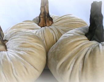 Pumpkin in Plush Velvet - Khaki  - small - with handmade stem