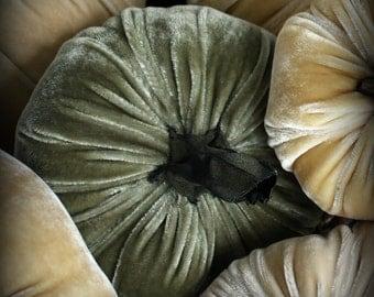 Sage Plush  Velvet  Pumpkin extra Large - with handmade stem