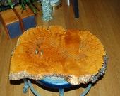 Beautiful Large Raw Edge Polished / Lacquered Burl Cribbage Board