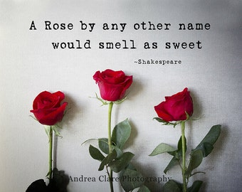 Romeo and Juliet, Fine Art Photograph, Photography, Print, Shakespeare, Roses, Quote, Romance, Valentines Day, Photo, Red, Love, Art, Photo