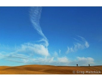 """Fine Art Color Landscape Photography of Tuscany - """"Cirrus Clouds Blue Sky and Cypress Trees"""""""