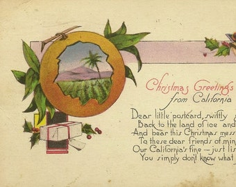 Christmas Greetings from California Vintage Christmas Postcard 1924 M Kashower Co