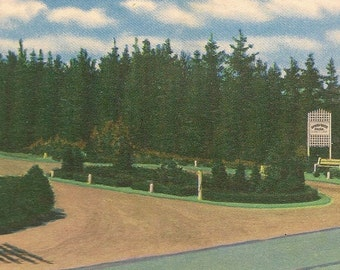 Barrie Ontario Vintage Postcard Entrance to Springwater Park Unused