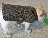 French Bulldog Frenchie  Blue and Gold Brocade Coat