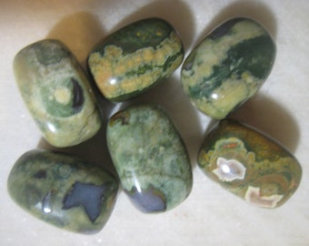 Rhyolite/Rain Forest Jasper Beads,  Semi-Precious Gemstone Beads,  24x14x14mm, 6 pcs.