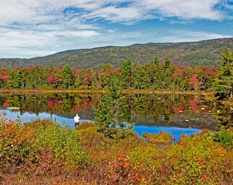 Lily Pond on the Kancamagus highway near North Conway and Bartlett, New Hampshire
