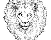Mighty Lion COLORING page - DIGITAL file - curly mane realistic portrait head Aslan King big cat wild wildlife Africa Kate Holloman