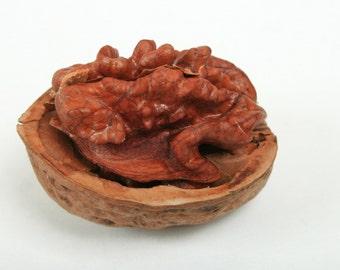 Walnut Coconut Body Scrub