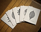 5-Notecard Set: Mixed Lea...