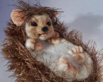 Hedgehog, Needle felted, One of a kind OOAK by Grannancan