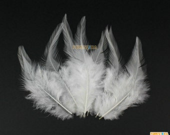 50 Pieces White  Feather 10-15cm (YM11)
