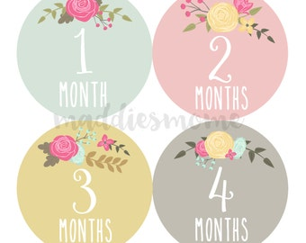 Baby Girl Month Stickers Monthly Baby Stickers, Milestone Baby Month Stickers, Monthly Bodysuit Vintage Floral (Cursive Floral Numbers)