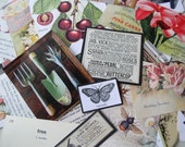 Garden/Nature Paper Scrap Images for Assemblage/Mixed Media/Art/Scrapbooking Pack 1