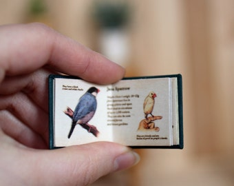 Cute little book about birds for Blythe, Azone and similar sized dolls.